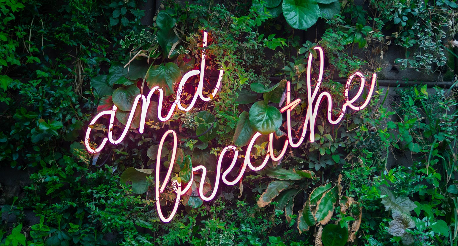 Neon sign 'And Breathe' on green leafy background.