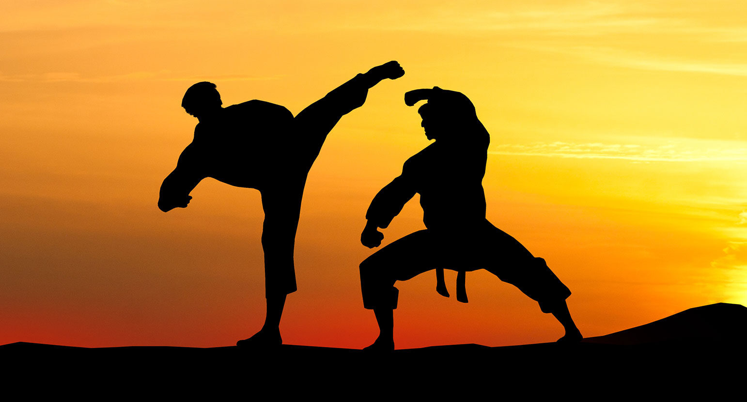Karate_Fighters